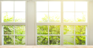 windows to outdoors